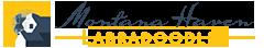 Montana Haven Labradoodle Breeders